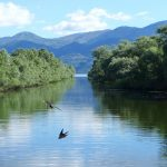The EU Commission acknowledges the need to redress wetlands